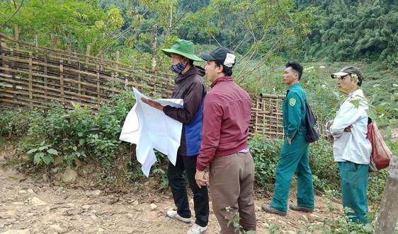 Điện Biên: Rà soát diện tích rừng để làm cơ sở chi trả dịch vụ môi trường rừng