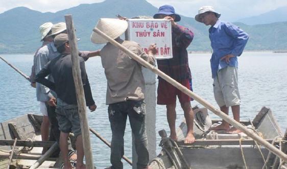 Thừa Thiên Huế thành lập nhiều khu bảo vệ nguồn lợi thủy sản