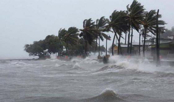 """Tổng cục Khí tượng thủy văn: Chủ động """"đón"""" mùa bão 2020"""