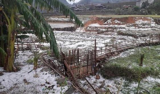 Nhiều tổ hợp xấu tác động gây ra các hiện tượng thời tiết cực đoan