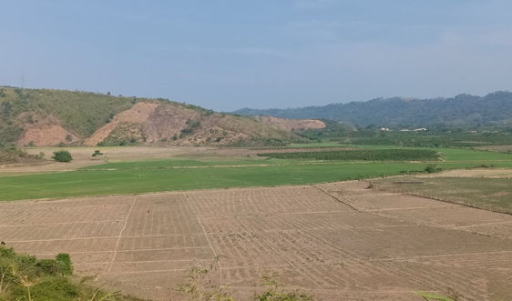 Đắk Nông: Hơn 5000ha cây trồng bị thiệt hại do hạn hán
