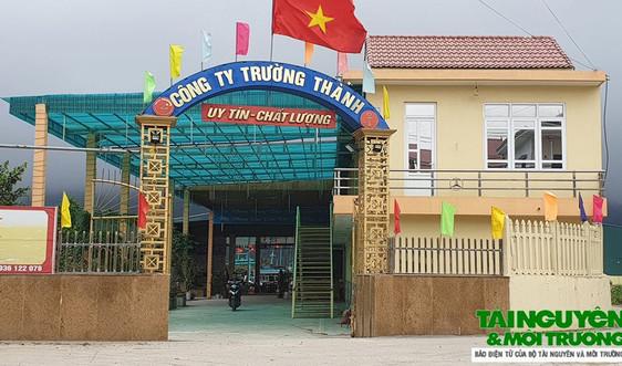 Hậu Lộc (Thanh Hóa): Cần xử lý nghiêm công trình cầu cảng trái phép trên sông Lạch Trường