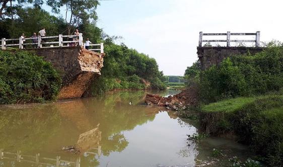 Xây dựng cầu tạm, đường tránh cho người dân sau sự cố sập cầu dân sinh tại Quảng Trị