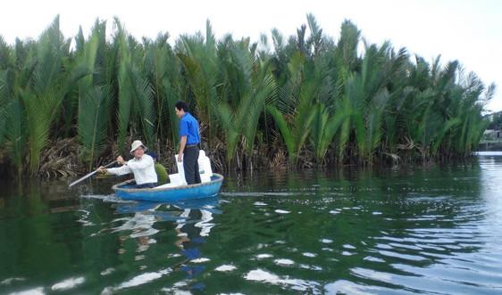 Quảng Ngãi: Chủ động điều tra, đánh giá và bảo vệ các vùng đất ngập nước