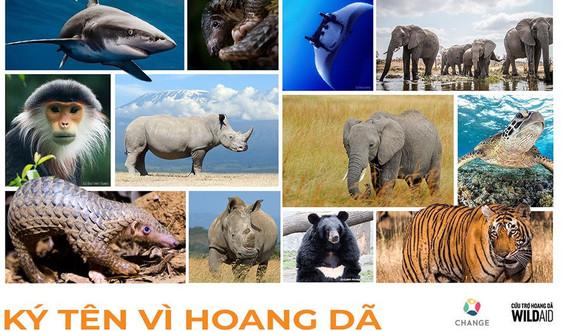 Doanh nhân cam kết bảo vệ động vật hoang dã