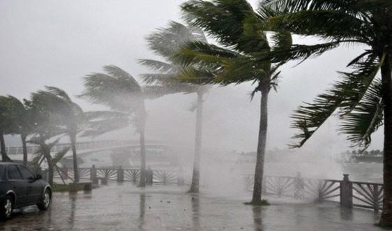 Nâng thời hạn dự báo bão, ATNĐ, chủ động phòng chống thiên tai
