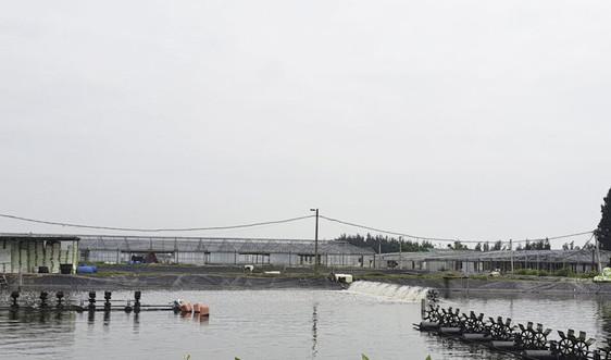 Quản lý môi trường trong nuôi trồng thủy sản