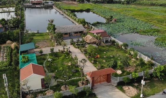 Xã Minh Tân, huyện Kiến Thụy (Hải Phòng): Có bao che cho sai phạm đất đai?