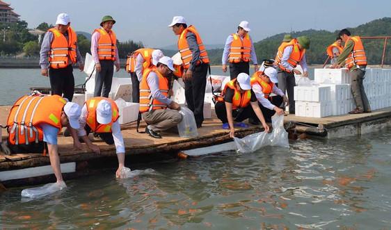 Quảng Ninh phát triển bền vững nguồn lợi thuỷ sản