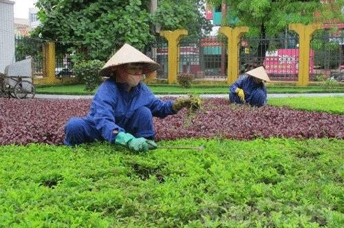 Bắc Giang: Từng bước đổi mới phương thức thu gom, vận chuyển rác thải