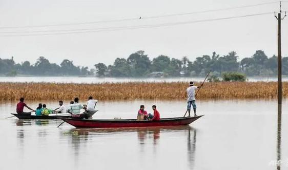 Ấn Độ: Lũ lụt ở bang Assam buộc một triệu người rời bỏ nhà cửa