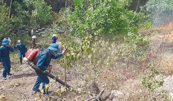 Nghệ An: Sẽ lắp camera để phát hiện cháy rừng kịp thời