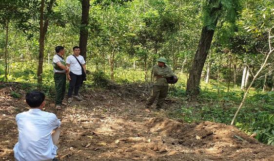 Thanh Hóa: Đẩy mạnh công tác quản lý bảo vệ rừng đặc dụng, phòng hộ