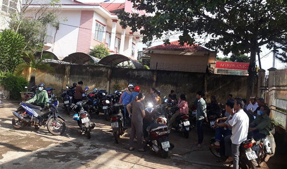 Khiếu nại bồi thường sau thu hồi đất tại Gia Lai: Đề xuất thanh tra trách nhiệm Chủ tịch huyện Chư Sê
