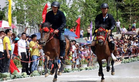 """Lào Cai: Hấp dẫn giải đua """" Vó ngựa trên mây"""""""