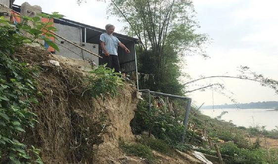 44 tỷ đồng xử lý cấp bách chống sạt lở bờ sông Chu