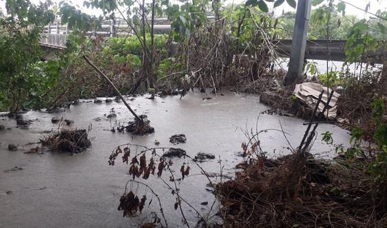 Hoài Đức - Hà Nội: Cầu Đào Nguyên lại ngập ngụa chất thải phân bùn bể phốt