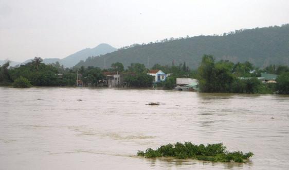 Tăng cường phòng, chống ngập lụt, úng, bảo đảm an toàn công trình thủy lợi khu vực Bắc bộ