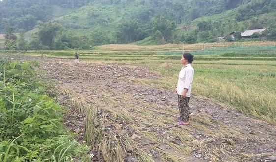 Bắc Kạn: Chậm khắc phục hậu quả sạt lở đất đá, vùi lấp ruộng vườn của người dân
