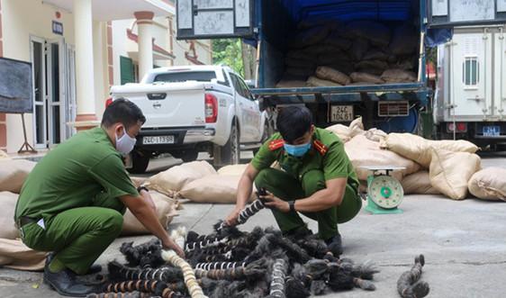 Lào Cai thu giữ 6 tấn lông gia súc không rõ nguồn gốc