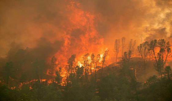 Mỹ: Cháy rừng ở California có thể tồi tệ nhất trong nhiều thập kỷ