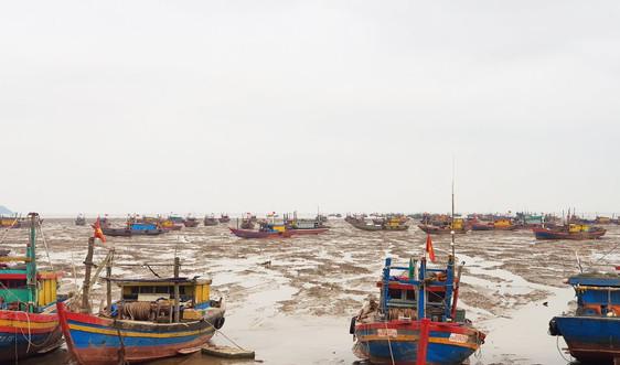 Xử phạt hơn 60 trường hợp sai phạm trong lĩnh vực nông– lâm– ngư nghiệp