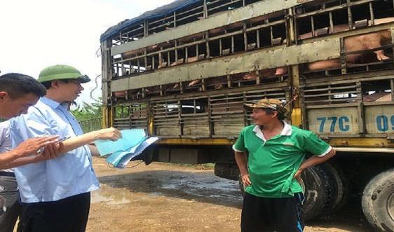 Thanh Hóa: Triển khai Tháng tổng vệ sinh, khử trùng tiêu độc môi trường