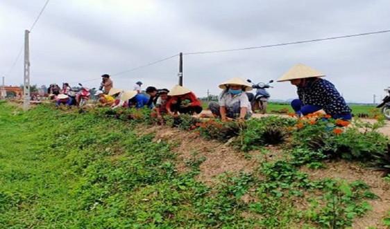 Đảm bảo tiêu chí môi trường sau xây dựng Nông thôn mới