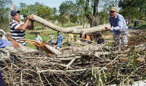 Huế: Hàng ngàn người chung tay làm sạch đẹp môi trường sau bão số 5