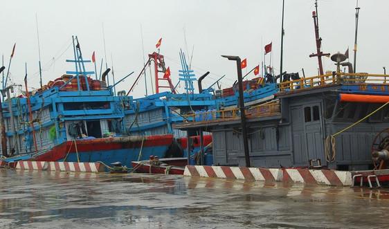 Nghệ An: Chuẩn bị ứng phó với bão số 8