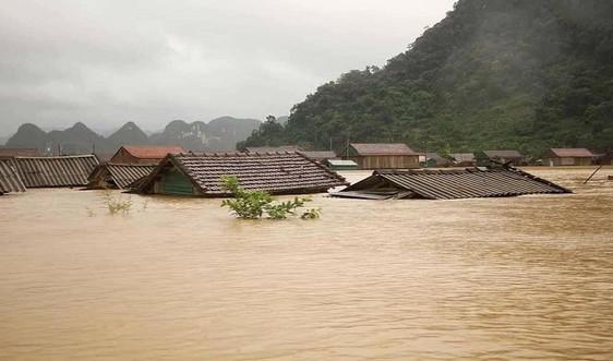 Quảng Bình: Phân bổ 1.000 tấn gạo cứu đói cho nhân dân bị ảnh hưởng do mưa lũ