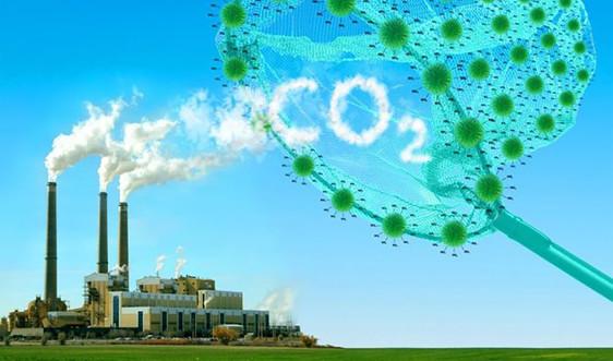 Việt Nam được chi trả gần 1.200 tỷ đồng để giảm phát thải khí Các-bon