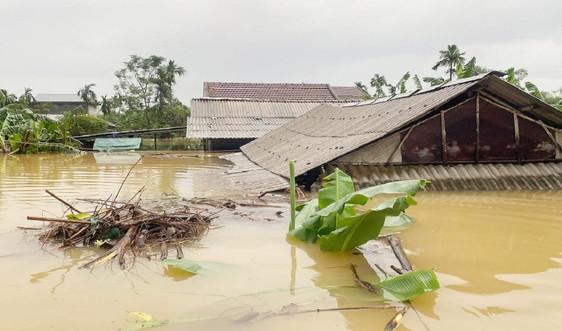 Thừa Thiên Huế: Phân bổ 1.000 tấn gạo để cứu đói cho nhân dân vùng lũ