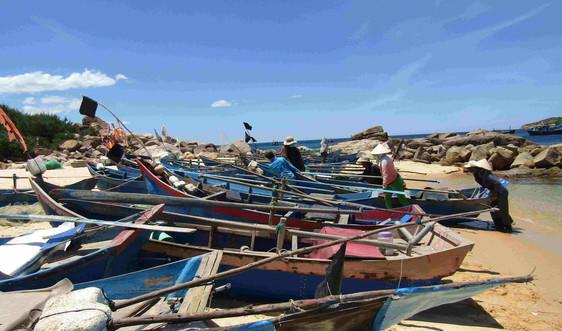 Phú Yên, Bình Định di dời người dân vùng nguy hiểm đến nơi an toàn tránh bão số 9