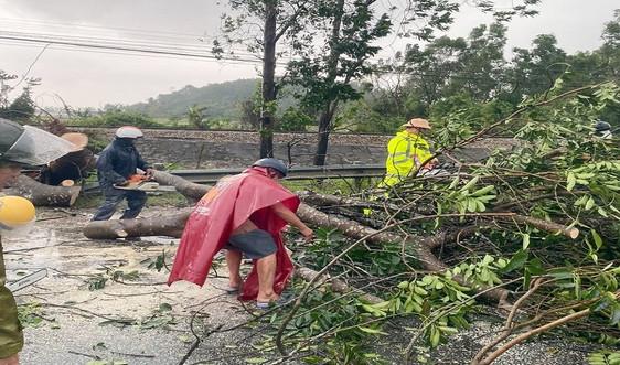 Bão số 9 khiến Huế có gió mạnh, cây xanh đổ la liệt quốc lộ 1A