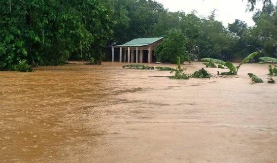 Cảnh báo lũ lớn và đặc biệt lớn trên các sông ở Quảng Nam, Quảng Ngãi