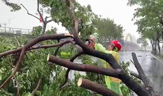 Gió bão số 9 quật ngã hàng loạt cây xanh tại Đà Nẵng