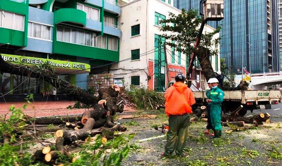 Đà Nẵng gồng mình khắc phục thiệt hại sau bão số 9