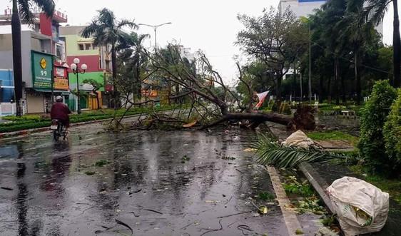 Phú Yên không có thiệt hại về người sau cơn bão số 9