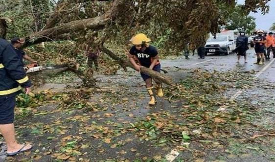 Bão mạnh nhất năm 2020 sắp đổ bộ, Philippines ban bố lệnh sơ tán khẩn cấp