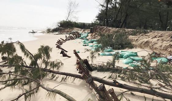 Thừa Thiên Huế: Hơn 14km bờ biển sạt lở do mưa bão