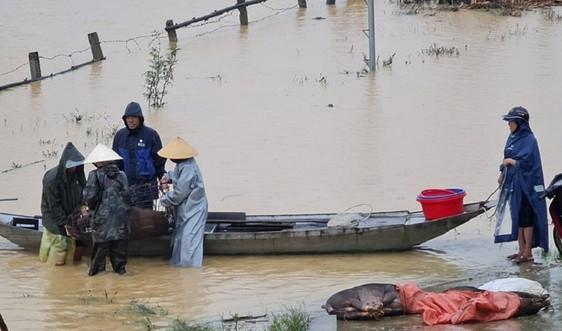 Nghệ An: Chủ động ứng phó với siêu bão Goni