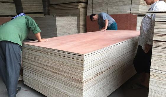 Sản xuất sạch hơn trong ngành gỗ ván ép ở Hà Nội