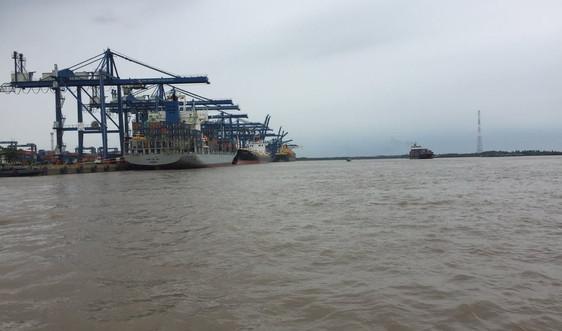 TP.HCM triển khai nhiều giải pháp bảo vệ môi trường lưu vực sông Đồng Nai