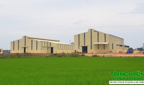 Vụ Công ty Mía đường Lam Sơn xây dựng Trung tâm chế biến nông sản trái phép: Xử phạt 17,5 triệu đồng