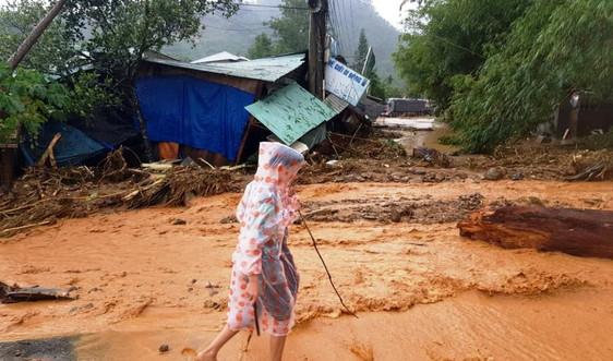 Quảng Nam: Rà soát, kiên quyết di dời dân khỏi khu vực nguy hiểm