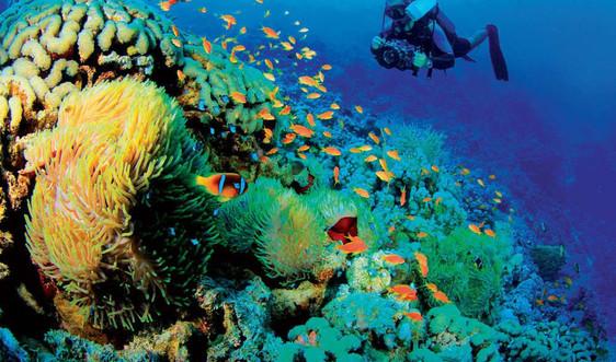 Hoàn thiện hành lang pháp lý đáp ứng mục tiêu phát triển bền vững kinh tế biển