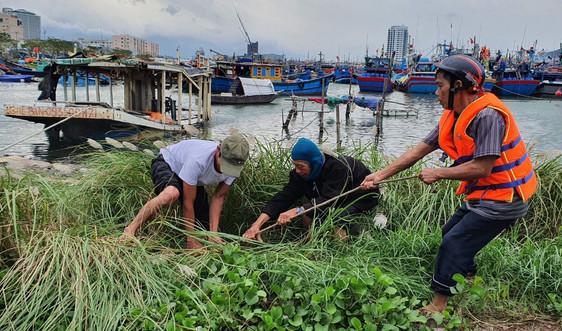 Trước giờ bão số 13 đổ bộ: Ngư dân Đà Nẵng cuống cuồng chạy bão