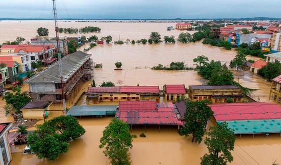 Ngân hàng Thế giới khuyến nghị Việt Nam cần hành động ngay trước những thảm họa thiên tai