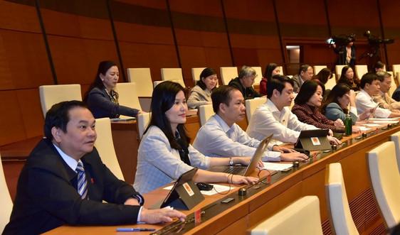 Chính quyền đô thị - Tinh gọn để nâng cao chất lượng phục vụ nhân dân